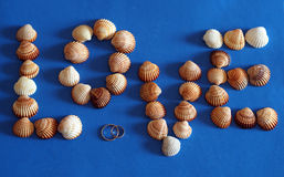 Symbol of love made of sea shells with blue background Royalty Free Stock Photography