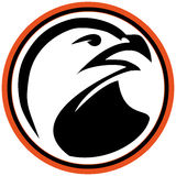 Symbol Martial arts- hawk,eagle. Stock Image