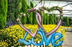 Symbol miłość Fotografia Royalty Free