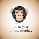 Symbol 2016 - monkey. On light brown background Vector Illustration