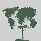 Symbol of nature,. Authors illustration in Stock Image