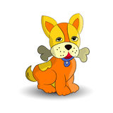Symbol of the new year 2018, orange dog, holding a bone in the teeth, cartoon on a white background. Vector Royalty Free Stock Images