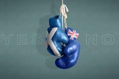 Symbol niezależności Szkocki referendum, 2014 Zdjęcia Royalty Free