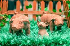 Symbol nowy rok 2019 Nowonarodzona ceramiczna zabawkarska świnia otaczająca obrazy royalty free