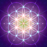 Symbol Of Sacred Geometry Royalty Free Stock Photography