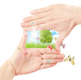 Symbol Of The Environment. Stock Images