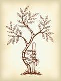 The symbol of orthopedics and traumatology. Illustration Royalty Free Stock Image
