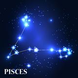 Symbol. Pisces Zodiac Sign. Vector Illustration Royalty Free Stock Images