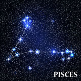 Symbol Pisces Zodiac Sign. Vector Illustration. Symbol Pisces Zodiac Sign. Vector Illustration EPS10 Stock Photo