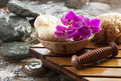 Symbol of purifying massage. Wet stones and flowers for hydration Royalty Free Stock Photo