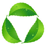 Symbol of recycle Stock Images