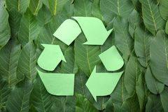 Symbol of recycling on leaves Stock Photo