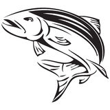 Symbol salmon Royalty Free Stock Image