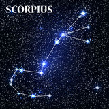 Symbol Scorpius Zodiac Sign. Vector Illustration. Stock Photography