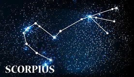 Symbol Scorpius Zodiac Sign. Vector Illustration. Royalty Free Stock Photo