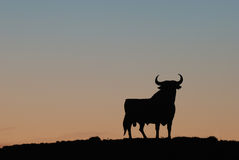 Symbol of southern Spain. The famous Black Bull at sunset Stock Images