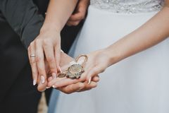 Symbol of a strong family in hands 2038. Royalty Free Stock Photo