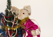 Symbol of 2019, a toy pig next to an elegant Christmas tree on a light background.  royalty free stock image