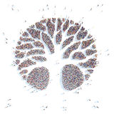 Symbol   tree. Stock Photo