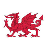 Symbol of Wales, vector illustration Stock Images