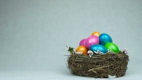 Symbol wielkanocy farbujący i malujący barwioni jajka jest w gniazdeczku, piórka spada puszek, pojęcie Chrześcijański wakacje zbiory wideo