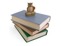 A symbol of wisdom. An owl as a symbol of wisdom Stock Images