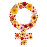 Symbol woman Stock Images