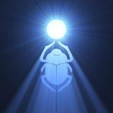 Symbole bleu d'épanouissement de coléoptère de scarabée illustration libre de droits