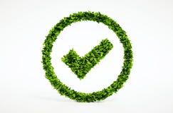 Symbole correct d'eco Image libre de droits