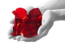 Symbole d'amour Image libre de droits