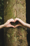 Symbole d'amour de coeur de main Image libre de droits
