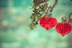 Symbole d'amour de coeur sur l'arbre Photos libres de droits
