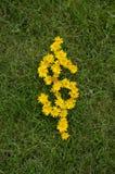 Symbole d'argent écrit avec des fleurs photographie stock