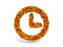 Symbole d'horloge de feuille d'automne Photographie stock