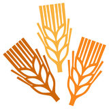 Symbole de blé Photo libre de droits