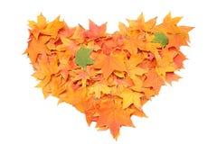 Symbole de coeur d'automne d'isolement sur le fond blanc Images stock