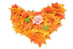 Symbole de coeur d'automne d'isolement sur le fond blanc Photos stock