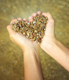 Symbole de coeur dans la main féminine Photo stock