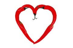 Symbole de coeur des poivrons de piment d'un rouge ardent d'isolement sur le blanc Photo stock