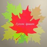 Symbole de feuille d'érable Illustration de vecteur Image stock