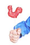 Symbole de jeune coq de sucrerie de 2017 sur le fond blanc Image libre de droits