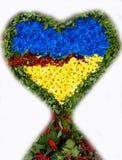 Symbole de l'amour - coeur dans les couleurs du drapeau national d'Ukr Image libre de droits