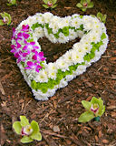 Symbole de l'amour - COEUR de FLEUR Image libre de droits