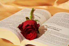 Symbole de l'amour religieux Image stock