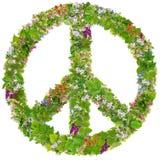 Symbole de paix vert des usines de ressort Images libres de droits