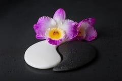 Symbole de Yin-Yang de la texture en pierre avec la fleur d'orchidée sur le noir de rosée images stock