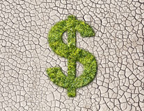 Symbole dollar d'herbe sur le fond criqué de la terre Photo libre de droits
