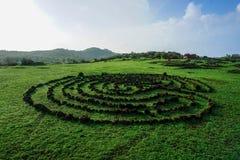 Symbole kamienie na zielonej trawie zdjęcie royalty free