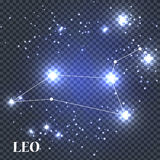 Symbole Leo Zodiac Sign Illustration de vecteur Images libres de droits