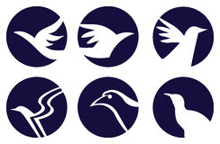 Symbole Logo Design d'oiseaux illustration stock